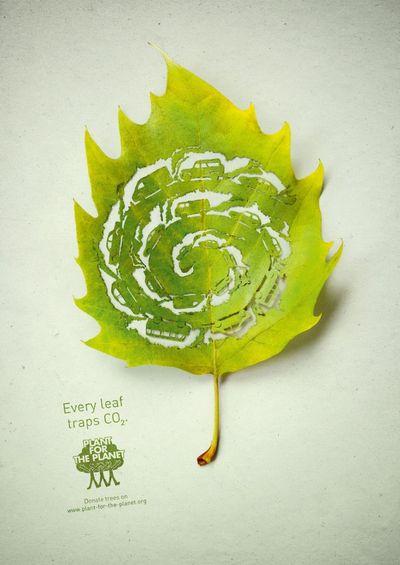 Leaf-3-600x848