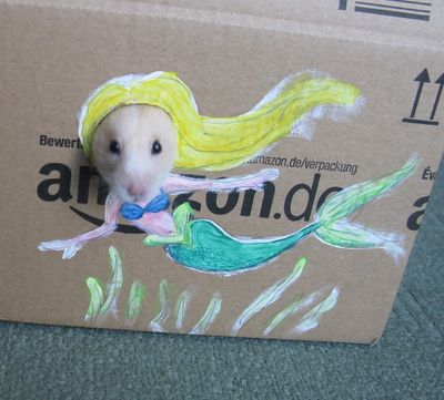 Hamster2